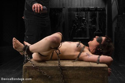 Photo number 8 from Proxy Paige vs Orlando shot for Device Bondage on Kink.com. Featuring Proxy Paige and Orlando in hardcore BDSM & Fetish porn.
