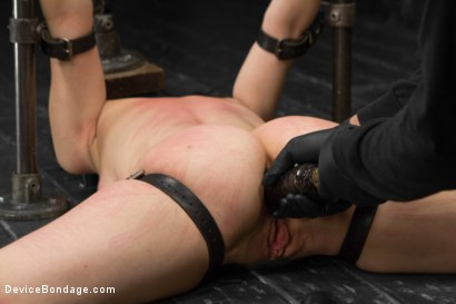 Photo number 14 from Proxy Paige vs Orlando shot for Device Bondage on Kink.com. Featuring Proxy Paige and Orlando in hardcore BDSM & Fetish porn.