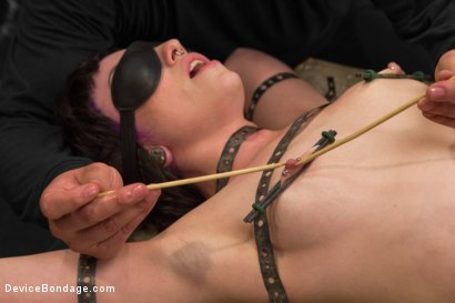 Photo number 5 from Proxy Paige vs Orlando shot for Device Bondage on Kink.com. Featuring Proxy Paige and Orlando in hardcore BDSM & Fetish porn.