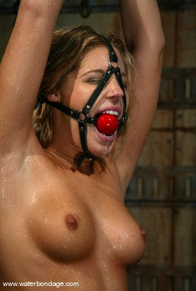 Photo number 5 from 5 Girl Shoot: Part 3 shot for Water Bondage on Kink.com. Featuring Hollie Stevens, Isis Love, Jessica Sexin, Sasha Monet and Lola in hardcore BDSM & Fetish porn.