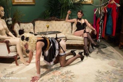 Photo number 4 from Sissification and Humiliation shot for divinebitches on Kink.com. Featuring Sean Spurt and Maitresse Madeline Marlowe in hardcore BDSM & Fetish porn.