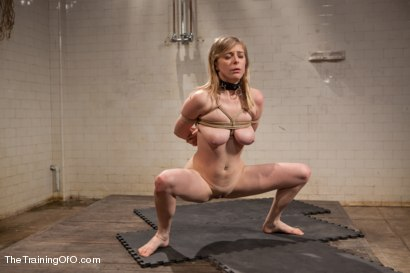 Photo number 4 from The Training of and Anal Slut, Day Three shot for The Training Of O on Kink.com. Featuring Penny Pax and Owen Gray in hardcore BDSM & Fetish porn.