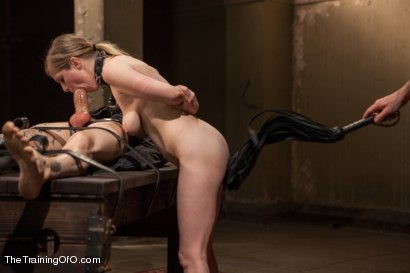 Photo number 9 from The Training of and Anal Slut, Day Three shot for The Training Of O on Kink.com. Featuring Penny Pax and Owen Gray in hardcore BDSM & Fetish porn.