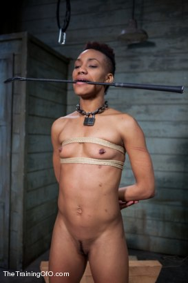 Photo number 15 from The Training of Nikki Darling, Day One shot for The Training Of O on Kink.com. Featuring Nikki Darling in hardcore BDSM & Fetish porn.