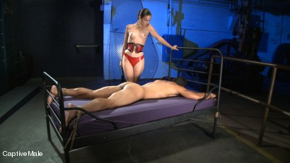 Photo number 2 from Ass Up! shot for Captive Male on Kink.com. Featuring Lobo and Amber Rayne in hardcore BDSM & Fetish porn.