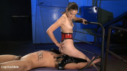 Photo number 4 from Ass Up! shot for Captive Male on Kink.com. Featuring Lobo and Amber Rayne in hardcore BDSM & Fetish porn.