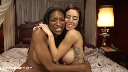 Photo number 9 from Sleep Over Cock:Natassia Dreams Surprise Gia Di Marco at a Girls Party shot for TS Pussy Hunters on Kink.com. Featuring Natassia Dreams and Gia DiMarco in hardcore BDSM & Fetish porn.