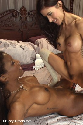 Photo number 11 from Sleep Over Cock:Natassia Dreams Surprise Gia Di Marco at a Girls Party shot for TS Pussy Hunters on Kink.com. Featuring Natassia Dreams and Gia DiMarco in hardcore BDSM & Fetish porn.