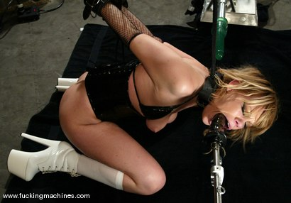 Photo number 11 from Gia Paloma shot for Fucking Machines on Kink.com. Featuring Gia Paloma in hardcore BDSM & Fetish porn.