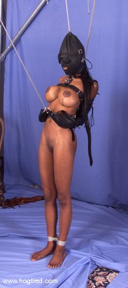 Photo number 12 from Tierra shot for Hogtied on Kink.com. Featuring Tierra in hardcore BDSM & Fetish porn.
