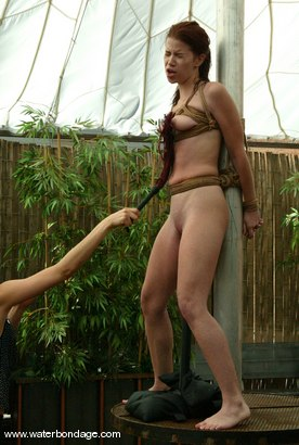 Hot bikini wrestling
