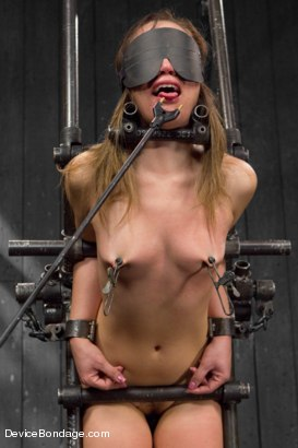 Photo number 7 from Kristina Rose Captured and fucked in extreme bondage positions shot for Device Bondage on Kink.com. Featuring Kristina Rose and Orlando in hardcore BDSM & Fetish porn.
