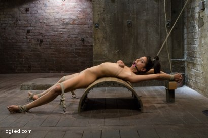 Photo number 10 from Lyla Storm - Complete Edited Live Show shot for Hogtied on Kink.com. Featuring Lyla Storm in hardcore BDSM & Fetish porn.