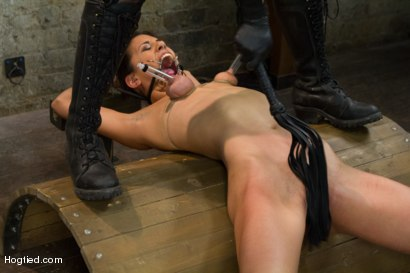Photo number 7 from Lyla Storm - Complete Edited Live Show shot for Hogtied on Kink.com. Featuring Lyla Storm in hardcore BDSM & Fetish porn.