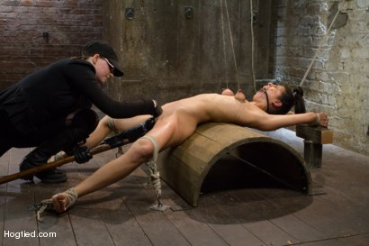 Photo number 8 from Lyla Storm - Complete Edited Live Show shot for Hogtied on Kink.com. Featuring Lyla Storm in hardcore BDSM & Fetish porn.