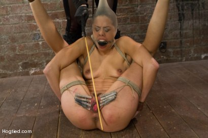 Photo number 14 from Lyla Storm - Complete Edited Live Show shot for Hogtied on Kink.com. Featuring Lyla Storm in hardcore BDSM & Fetish porn.