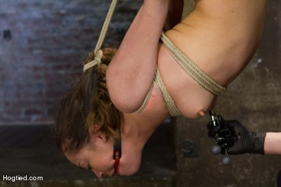 Photo number 13 from Hot Hispanic Drilled & Challenged with Unforgiving Bondage shot for Hogtied on Kink.com. Featuring Kristina Rose in hardcore BDSM & Fetish porn.