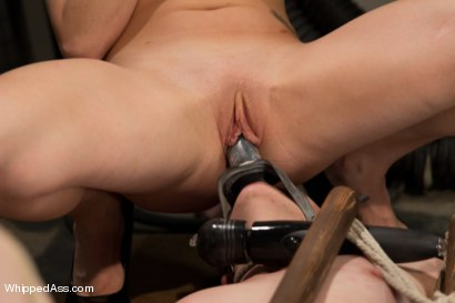 Photo number 12 from Lesbian Programming shot for Whipped Ass on Kink.com. Featuring Lorelei Lee and Coral Aorta in hardcore BDSM & Fetish porn.