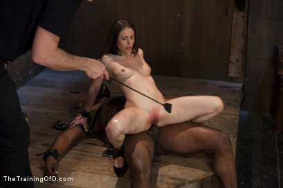 Photo number 13 from The Training of the Pretty Girl, Day Two shot for The Training Of O on Kink.com. Featuring Casey Calvert  and Michael Ambrose in hardcore BDSM & Fetish porn.
