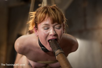 Photo number 15 from The Training of Claire Robbins, Day One shot for The Training Of O on Kink.com. Featuring Claire Robbins in hardcore BDSM & Fetish porn.