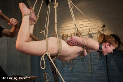Photo number 14 from The Training of Claire Robbins, Day One shot for The Training Of O on Kink.com. Featuring Claire Robbins in hardcore BDSM & Fetish porn.