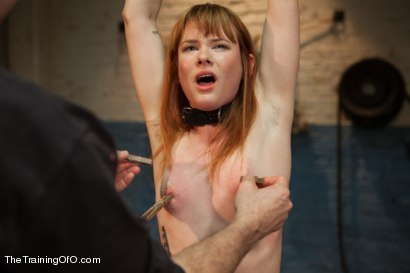 Photo number 5 from The Training of Claire Robbins, Day One shot for The Training Of O on Kink.com. Featuring Claire Robbins in hardcore BDSM & Fetish porn.
