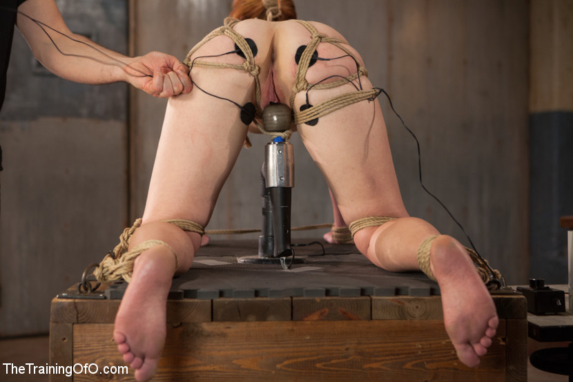 Torture on the torturer. Just gets better and better.