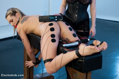 Photo number 15 from Electro Ass Fucking for Dahlia Sky! shot for Electro Sluts on Kink.com. Featuring Dahlia Sky and Aiden Starr in hardcore BDSM & Fetish porn.