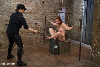 Photo number 12 from Jodi Taylor: Eager slut elaborately bound, caned, zapped and fucked! shot for Hogtied on Kink.com. Featuring Jodi Taylor in hardcore BDSM & Fetish porn.