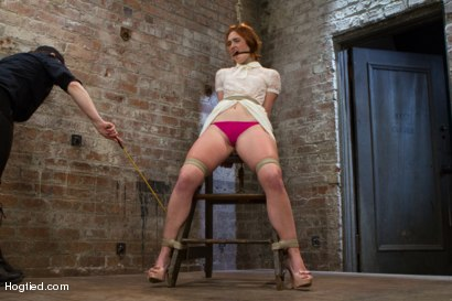 Photo number 5 from Jodi Taylor: Eager slut elaborately bound, caned, zapped and fucked! shot for Hogtied on Kink.com. Featuring Jodi Taylor in hardcore BDSM & Fetish porn.