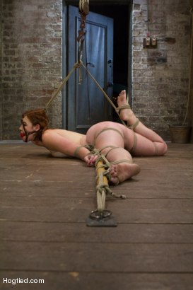 Photo number 7 from Jodi Taylor: Eager slut elaborately bound, caned, zapped and fucked! shot for Hogtied on Kink.com. Featuring Jodi Taylor in hardcore BDSM & Fetish porn.