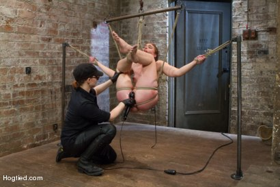 Photo number 15 from Jodi Taylor: Eager slut elaborately bound, caned, zapped and fucked! shot for Hogtied on Kink.com. Featuring Jodi Taylor in hardcore BDSM & Fetish porn.