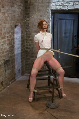 Photo number 2 from Jodi Taylor: Eager slut elaborately bound, caned, zapped and fucked! shot for Hogtied on Kink.com. Featuring Jodi Taylor in hardcore BDSM & Fetish porn.