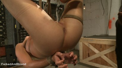 Photo number 12 from Dylan's Destruction shot for Fucked and Bound on Kink.com. Featuring Dylan Ryan and Mickey Mod in hardcore BDSM & Fetish porn.