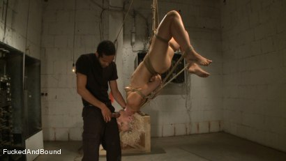 Photo number 7 from Dylan's Destruction shot for Fucked and Bound on Kink.com. Featuring Dylan Ryan and Mickey Mod in hardcore BDSM & Fetish porn.
