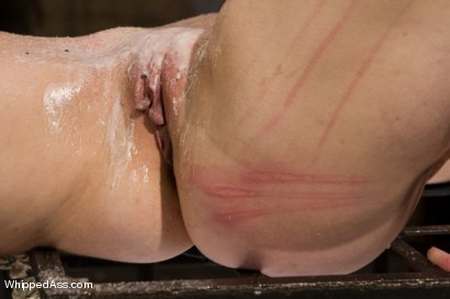 Photo number 7 from Bella's Submission shot for Whipped Ass on Kink.com. Featuring Felony and Bella Rossi in hardcore BDSM & Fetish porn.