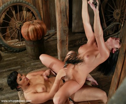Photo number 12 from DragonLily and Sativa Rose shot for Whipped Ass on Kink.com. Featuring Sativa Rose and DragonLily in hardcore BDSM & Fetish porn.