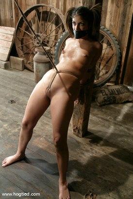 Photo number 15 from Gia Jordan shot for Hogtied on Kink.com. Featuring Gia Jordan in hardcore BDSM & Fetish porn.