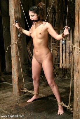 Photo number 6 from Gia Jordan shot for Hogtied on Kink.com. Featuring Gia Jordan in hardcore BDSM & Fetish porn.