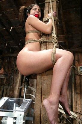Photo number 7 from Gia Jordan shot for Hogtied on Kink.com. Featuring Gia Jordan in hardcore BDSM & Fetish porn.