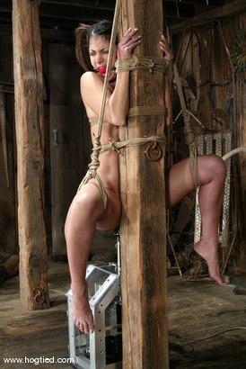 Photo number 8 from Gia Jordan shot for Hogtied on Kink.com. Featuring Gia Jordan in hardcore BDSM & Fetish porn.