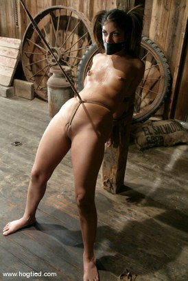 Photo number 15 from Gia Jordan shot for Hogtied on Kink.com. Featuring Gia Jordan in hardcore BDSM & Fetish porn.