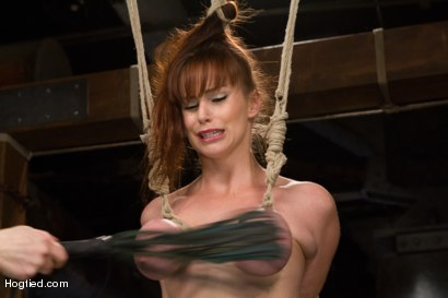 Photo number 2 from Bimbo With Big Tits Gets Wrecked! shot for Hogtied on Kink.com. Featuring Bella Rossi in hardcore BDSM & Fetish porn.