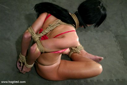 Photo number 2 from Melissa Lauren shot for Hogtied on Kink.com. Featuring Melissa Lauren in hardcore BDSM & Fetish porn.