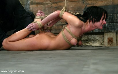 Photo number 7 from Melissa Lauren shot for Hogtied on Kink.com. Featuring Melissa Lauren in hardcore BDSM & Fetish porn.