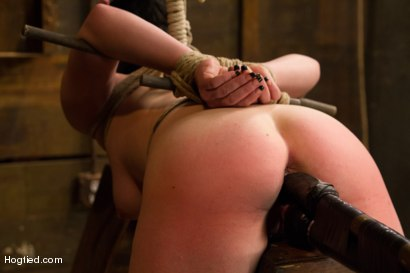 Photo number 6 from Pale Big Breasted Brunette Beauty Gets Anal Cherry Taken shot for Hogtied on Kink.com. Featuring Belle Noire in hardcore BDSM & Fetish porn.