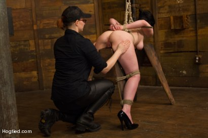 Photo number 7 from Pale Big Breasted Brunette Beauty Gets Anal Cherry Taken shot for Hogtied on Kink.com. Featuring Belle Noire in hardcore BDSM & Fetish porn.