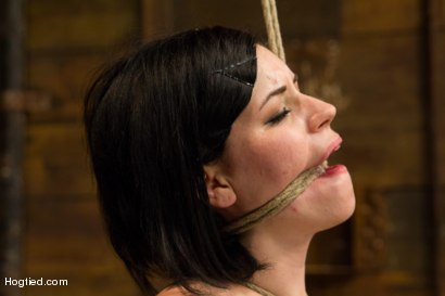 Photo number 10 from Pale Big Breasted Brunette Beauty Gets Anal Cherry Taken shot for Hogtied on Kink.com. Featuring Belle Noire in hardcore BDSM & Fetish porn.