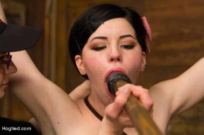 Photo number 3 from Pale Big Breasted Brunette Beauty Gets Anal Cherry Taken shot for Hogtied on Kink.com. Featuring Belle Noire in hardcore BDSM & Fetish porn.