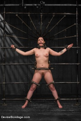 Photo number 3 from Relentless - Andy San Dimas  shot for Device Bondage on Kink.com. Featuring Andy San Dimas, Orlando, Mz Berlin and Lola Marx in hardcore BDSM & Fetish porn.